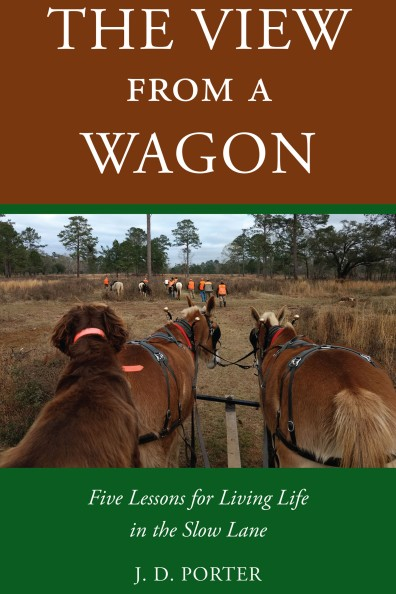 View_from_a_Wagon_ebook