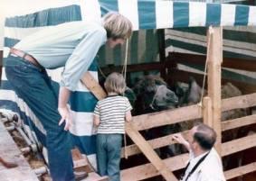 animal shipment 1974