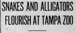 1914 headline