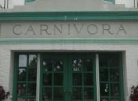 Carnivora 1